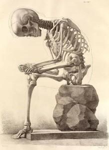 dead mens bones